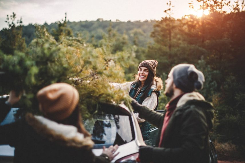 Holidays and Schizophrenia Strategies for Families Coping with Seasonal Triggers